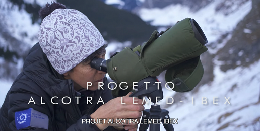 Sono on line sul canale You Tube dei Parchi Alpi Cozie e sulla pagina dedicata al progetto, i 6 video realizzati nell'ambito del progetto LEMED Ibex