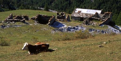 A Pragelato: Una montagna da vivere