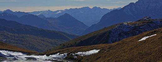 Cammini di coesistenza: sulle tracce del lupo per ri-scoprire la montagna nella sua complessità