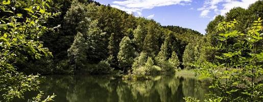 Sui sentieri della biodiversità con Alpi Cozie Outdoor