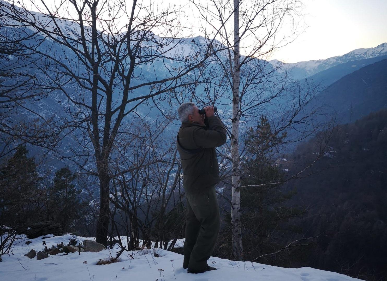 Vigilanza nei Parchi Alpi Cozie. Foto Silvia Alberti