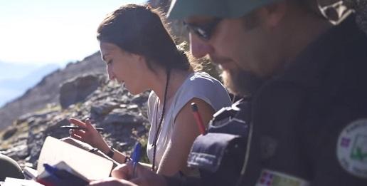 Online i video Lemed-Ibex per la conservazione dello Stambecco
