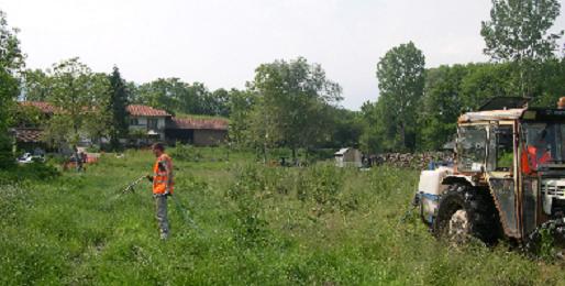 Trattamenti per ridurre le zanzare a Avigliana, Villar Dora e Sant'Antonino di Susa