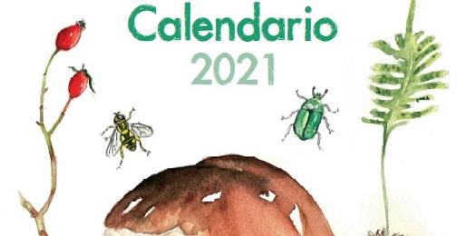 Dove trovare il calendario 2021 dei Parchi Alpi Cozie?