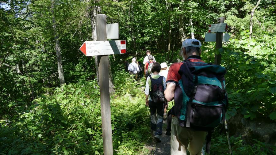 Escursione estiva nei Parchi Alpi Cozie