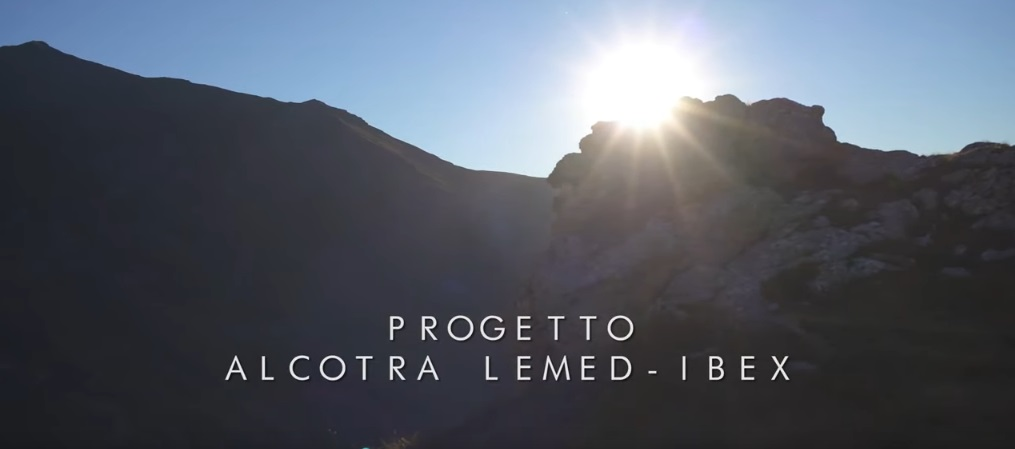 Video completo progetto Lemed-ibex