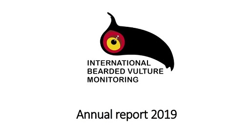 Pubblicato il Report 2019 dell'International Bearded Vulture Monitoring