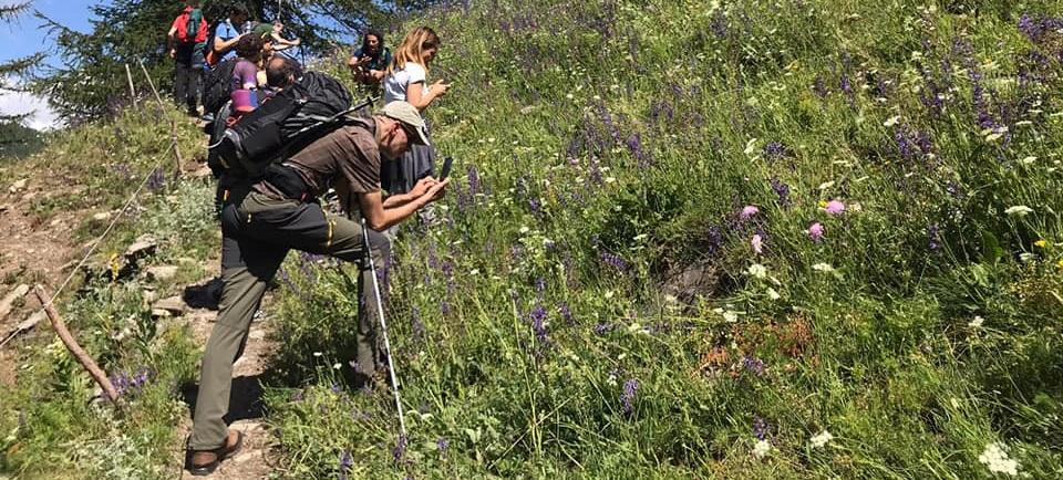Domenica 28 giugno Parco Val TronceaItinerario Escursionistico Personalizzato di Scenario Montagna