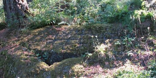 Importanza paletnologica delle zone comprese nel  parco naturale Orsiera Rocciavré