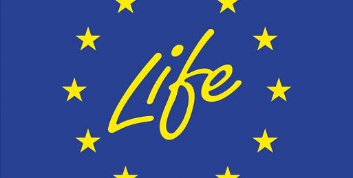 Progetto LIFE WOLFALPS.EU (2019-2024) Avvio selezione collaboratore per attività di comunicazione