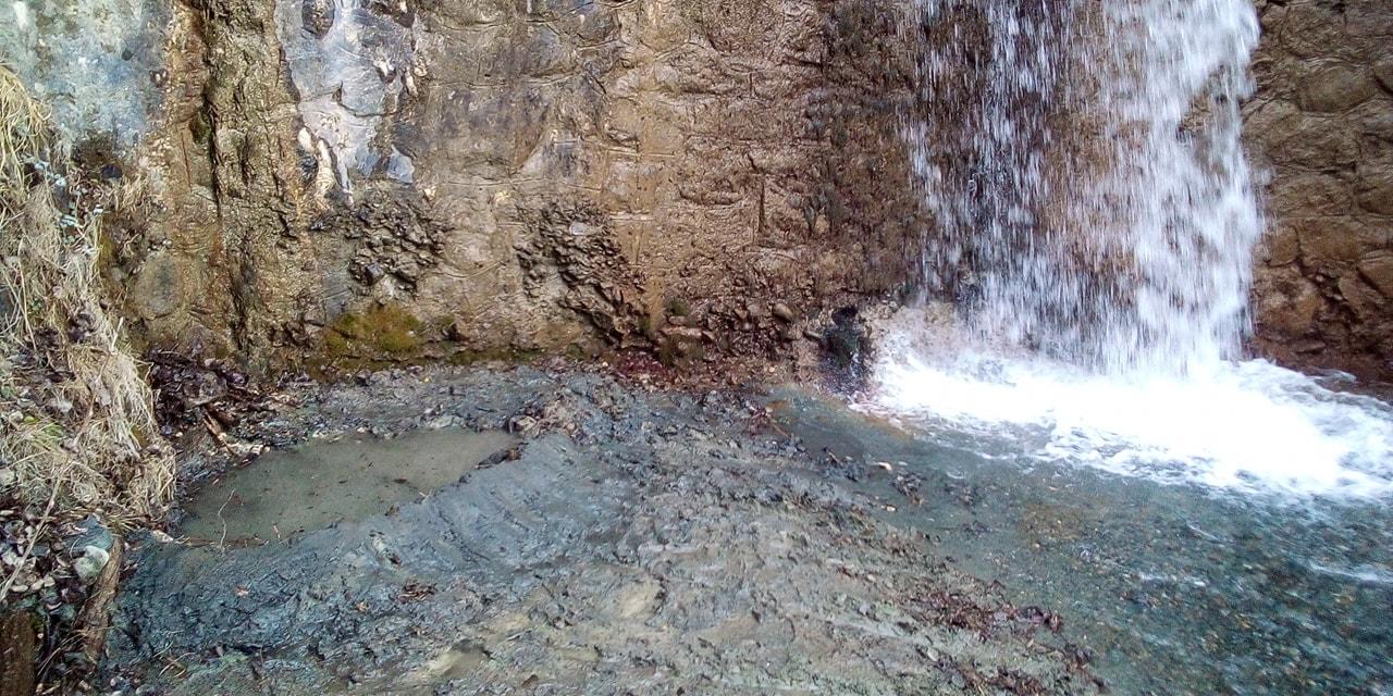 Intervento per la salvaguardia della biodiversità. Un intervento per agevolare la riproduzione della salamandra