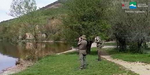 La vigilanza nei Parchi Alpi Cozie durante l'emergenza Covid-19