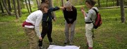 Interventi larvicidi nei territori del Parco naturale dei Laghi di Avigliana e nei Comuni di Avigliana, Villar Dora, Trana, Sant'Antonino di Susa