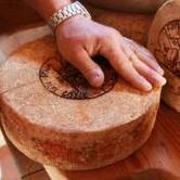 """Sabato 21 luglio Pragelato: Escursione """"L'oro della montagna di oggi, il formaggio"""""""