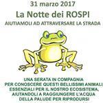 31 marzo 2017 - La notte dei rospi a Avigliana