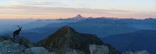 Ritorna il Trekking Parchi Alpi Cozie